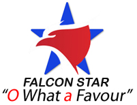 Falconstarsgroup